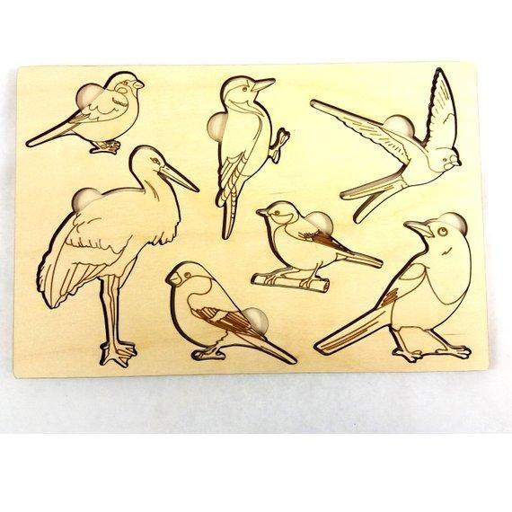 Birds Educational Puzzle